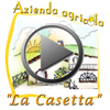 lacasetta play video